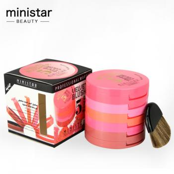 MINISTAR Velvet 5 Colour Blusher